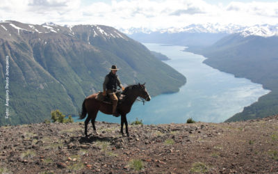 Knowing the World on Horseback
